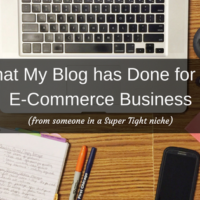 What My Blog Has Done for My Online Store with Erika Neumayer